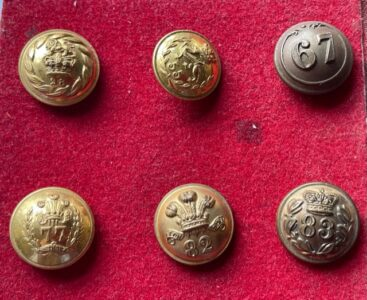 Victorian numbered Infantry buttons, priced individually. 28, 55, 67, 77, 82, 83